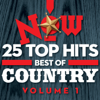Various Artists - NOW: 25 Top Hits Best of Country, Vol. 1 artwork