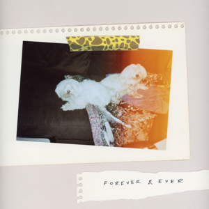 SALES - Forever & Ever