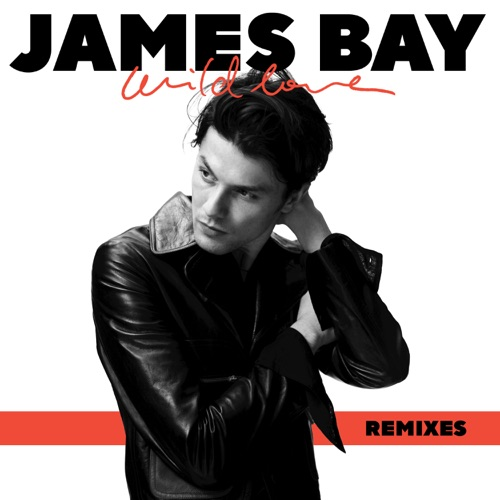 James Bay - Wild Love (Remixes) - Single