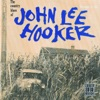 The Country Blues of John Lee Hooker (Remastered), John Lee Hooker