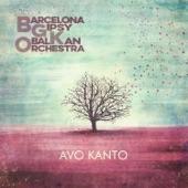 Barcelona Gipsy Balkan Orchestra - Raikos