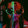 PnB Rock - Catch These Vibes Album