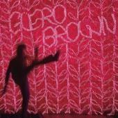 Güero Brown - Sunny Days