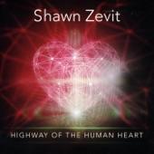 Shawn Zevit - I'll Try