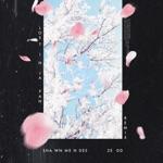 Shawn Mendes/Zedd