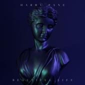 Beautiful Life (Instrumental)
