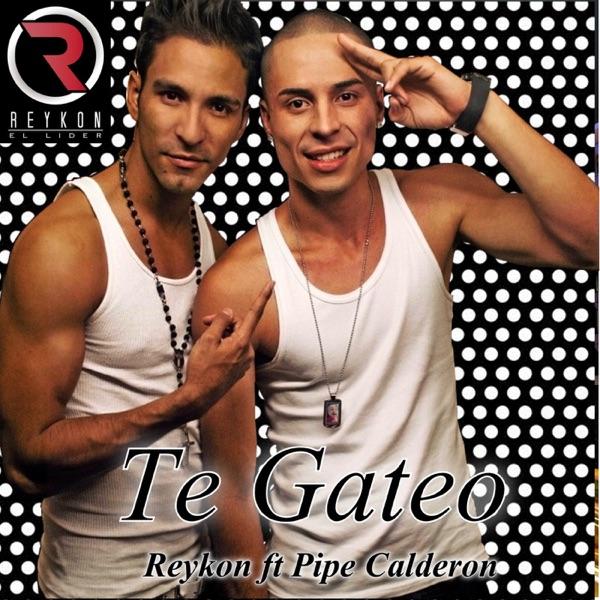 Te Gateo (feat. Pipe Calderon) - Single