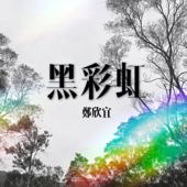 黑彩虹 - 鄭欣宜