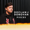 Declan J Donovan - Pieces Grafik