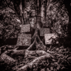 Harmony of Difference - EP - Kamasi Washington