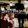 Bruce Robison - Desperately
