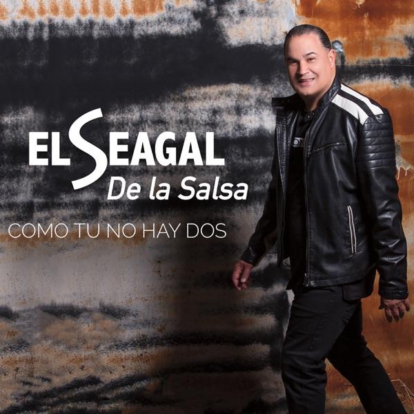 El Seagal De La Salsa - El Caballero De Tu Amor Soy Yo