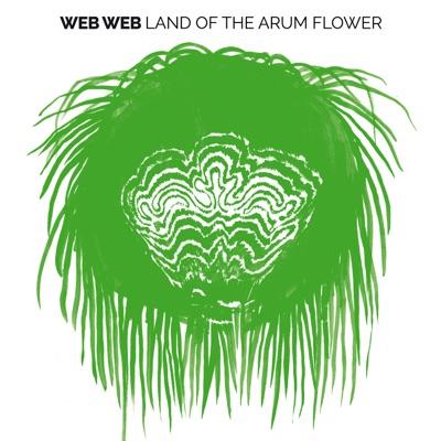 Web Web