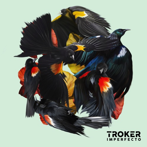 Album artwork of Troker – Imperfecto