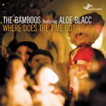 The Bamboos - I Got Burned (feat. Tim Rogers)
