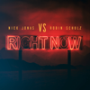 Right Now - Nick Jonas & Robin Schulz mp3