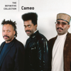 Cameo - Word Up! (Single Version) artwork