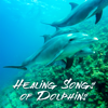 Healing Songs of Dolphins: Sleep Music, RelaxingTherapy Sounds for Reduce Stress, Insomnia and Depression, Inner Peace, Well-Being - Relaxing Nature Sounds Collection, Meditation Music Zone & Deep Sleep Music Academy