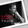 Marco Borsato - Vrienden kunstwerk
