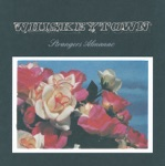 Whiskeytown - Excuse Me While I Break My Own Heart Tonight