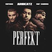 Perfekt (feat. Sofiane) - Raf Camora & AriBeatz