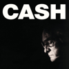 Johnny Cash - Hurt Grafik