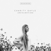 Lord You Are My Song (Deluxe Edition) - Charity Gayle