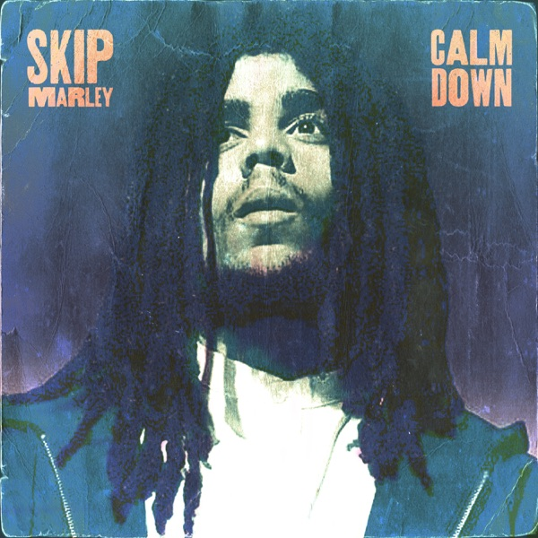 Calm Down - Single