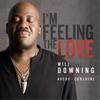 I'm Feeling the Love (feat. Avery*Sunshine) - Single