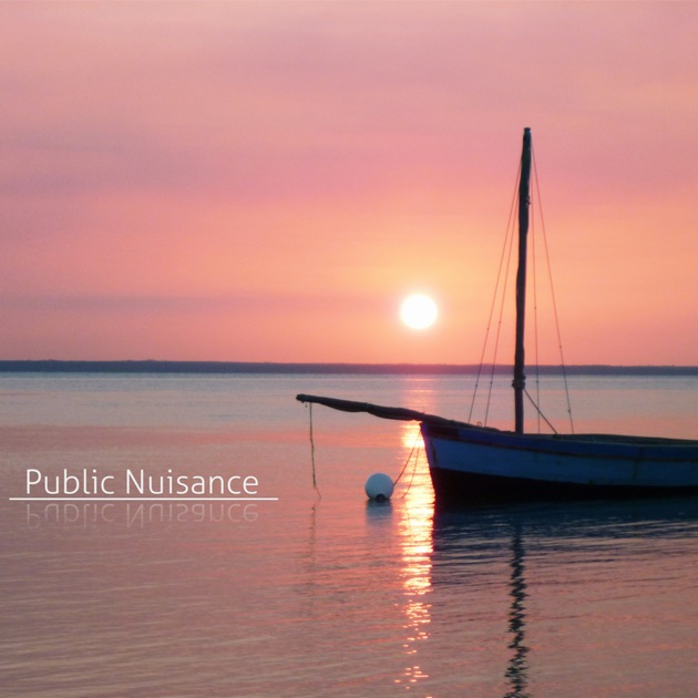 public nuisance Health and safety code title 5 sanitation and environmental quality subtitle a sanitation chapter 343 abatement of public nuisances subchapter a general provisions.