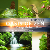 Top 111 Oasis of Zen Deep Relaxation: Healing Nature Collection, New Age Music for Yoga Meditation, Deep Sleep & Wellbeing, Mindfulness Training, Spa Background