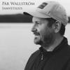 Pär Wallström - Samvetsljus bild