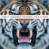 Thirty Seconds to Mars - Hurricane artwork