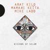 Arat Kilo, Mamani Keita & Mike Ladd - Dou Coula artwork