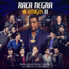 Raça Negra e Amigos II (Ao Vivo) - Raça Negra
