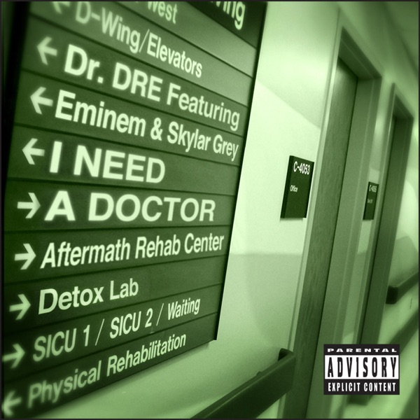 I Need a Doctor (feat. Eminem & Skylar Grey) - Single