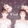 Selection - 25th Anniversary Self Selection - - Wink