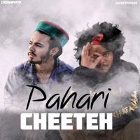 Pahari Cheeteh (feat. Sun J) - Single