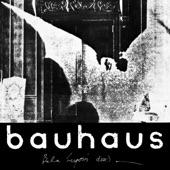 Bauhaus - Boys (Original Version)