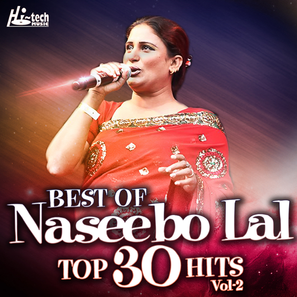 Best Of Naseebo Lal Top 30 Hits, Vol  2 by Naseebo Lal