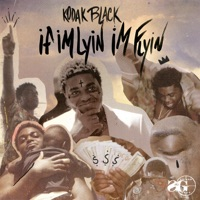If I'm Lyin, I'm Flyin - Single Mp3 Download