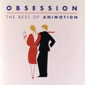 Animotion - Let Him Go