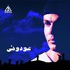 Amr Diab - Awedouny artwork