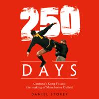 Daniel Storey - 250 Days artwork