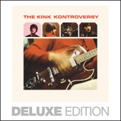 The Kinks - I'm Not Like Everybody Else