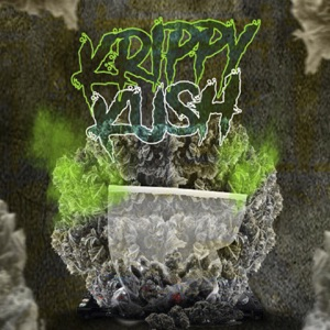 Krippy Kush (feat. Bad Bunny, Ñengo Flow & Nov Yjry) [Mambo Remix] - Single Mp3 Download