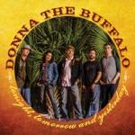 Donna the Buffalo - Tonight, Tomorrow and Yesterday