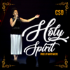CSO - Holy Spirit artwork