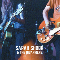Sarah Shook & the Disarmers - The Way She Looked at You