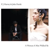 John Parish & PJ Harvey - Black Hearted Love